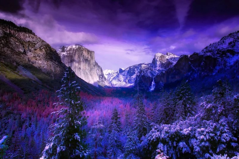 Yosemite National Park is one of California's best destinations for families in winter