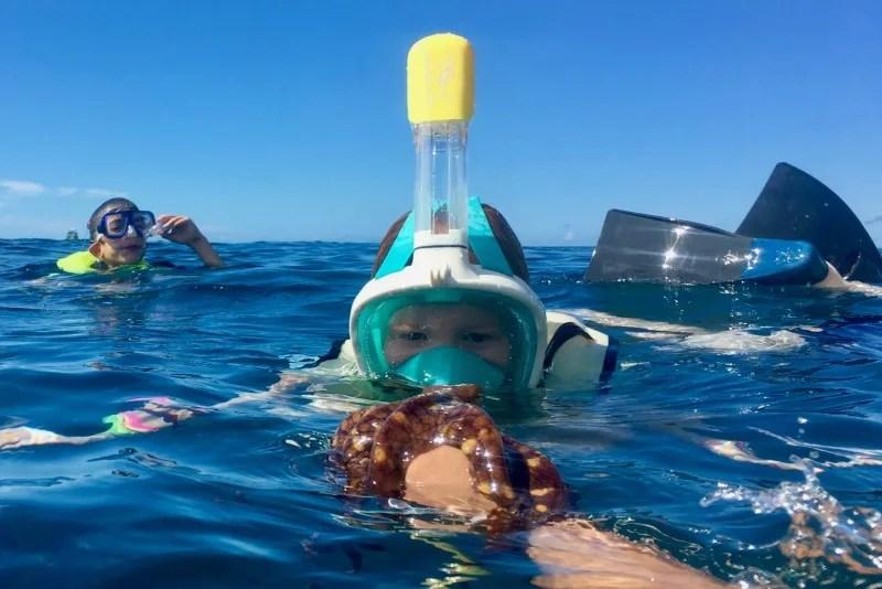 Disney Aulani Splurges - Catamaran Snorkeling with Octopus