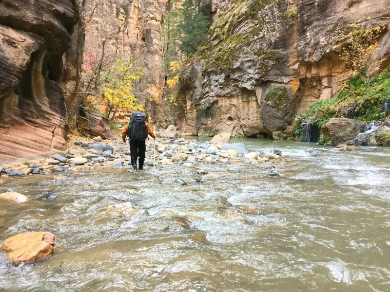 National Parks in Fall - Zion