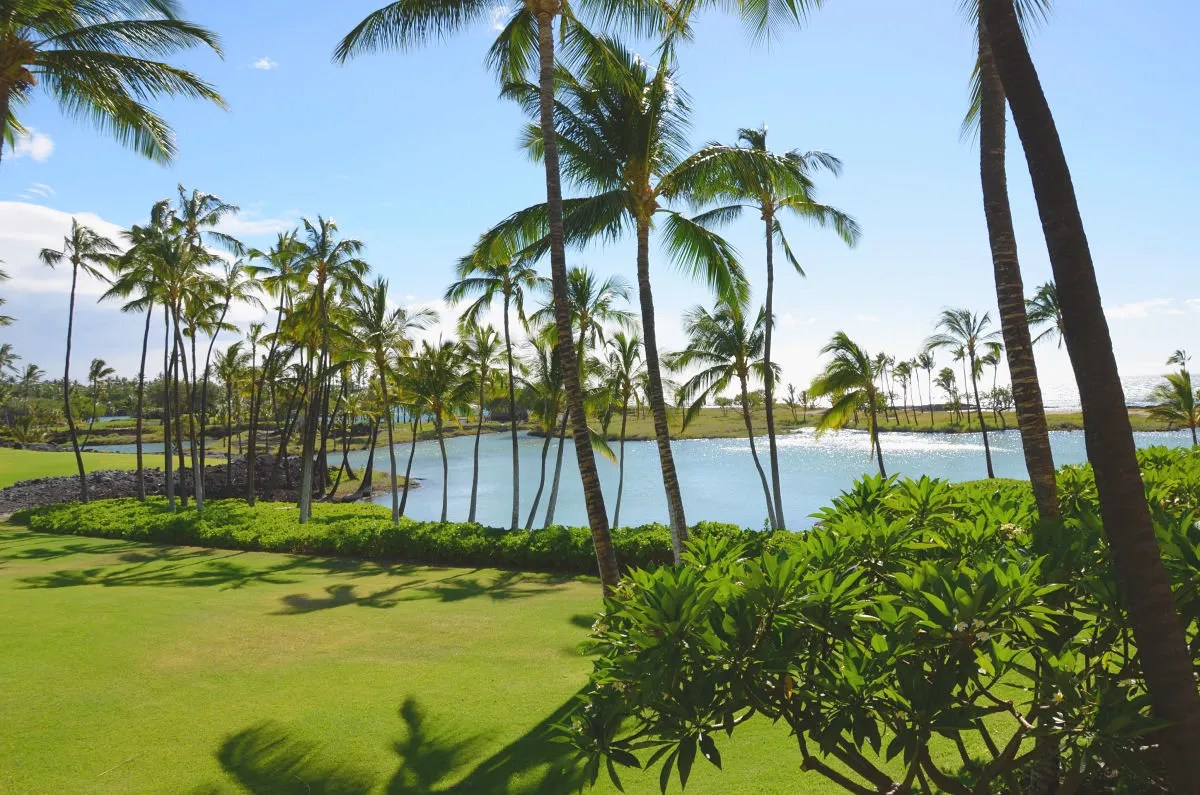 Hawaii Big Island with Kids - Mauna Lani Fishponds