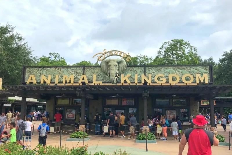 Disney Animal Kingdom Entrance