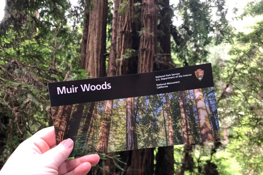 Muir Woods Map and Guide