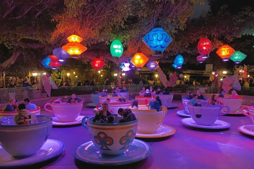 Disneyland Tea Cups at Night
