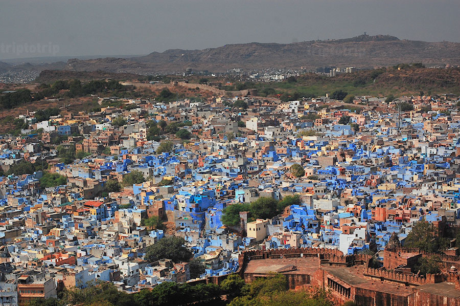 Jodhpur the blue citu _ febry fawzi
