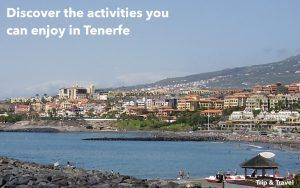 Tenerife Day Excursions, boat trips, fishing sails, hotels, reservations, tickets, Canary Islands, Spain, paella cooking show, dolphins show, whales watching, holidays
