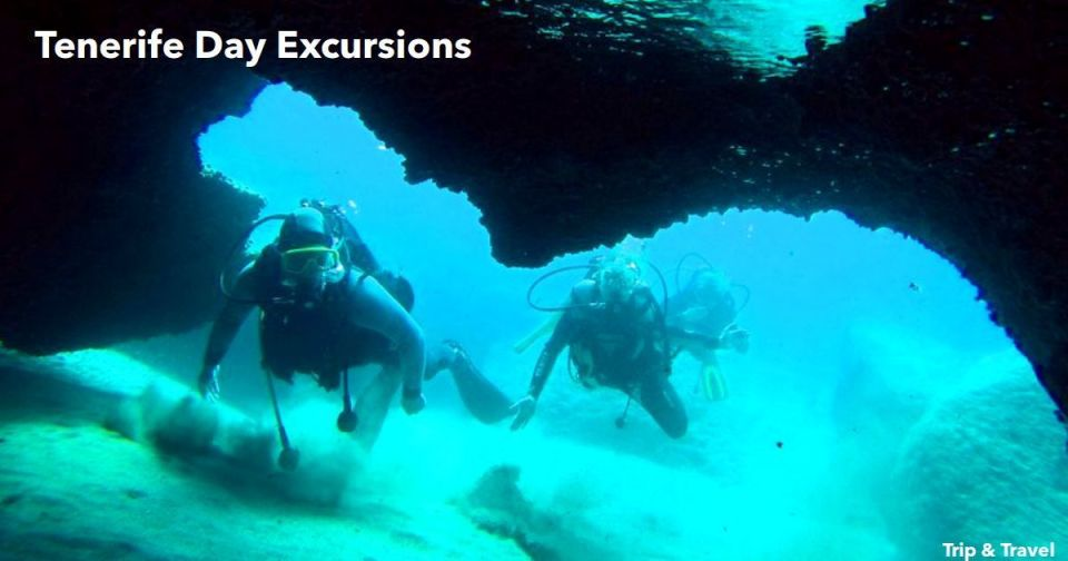 Tenerife Day Excursions, holidays, tickets, reservations, hotels, scuba diving, dolphin show, whales watching, Spain, Canary Islands, paella cooking show, España, Islas Canarias