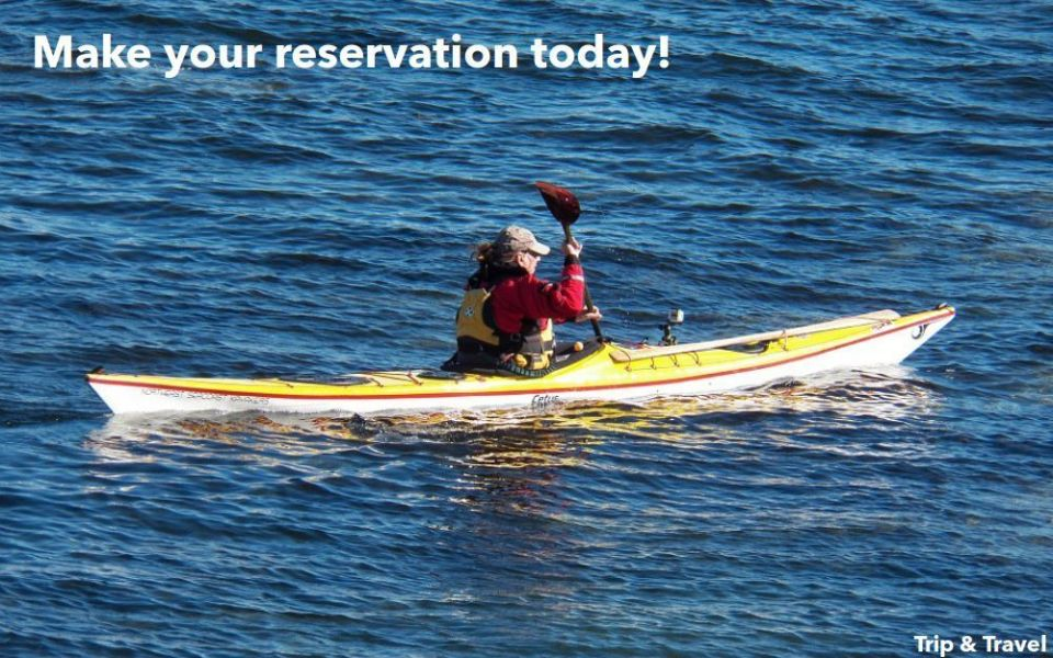 Tenerife Excursions Kayak, restaurants, hotels, reservations, holidays, tickets, Canary Islands, Spain, sea, zealot boats, jetski, snorkeling, whales watching, fishing
