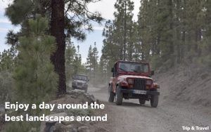 Tenerife Jeep Excursions, tickets, buggys, Spain, Canary Islands, holidays, hotels, reservations, trekking, restaurants, Islas Canarias, España, quads, whales watching