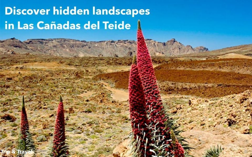 Tenerife Trips to Mountain Teide, tickets, hotels, reservations, trekking, excursions, Canary Islands, Spain, bus, jeeps, buggies, quads, car renting, holidays, restaurants