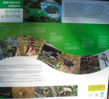 Flora i fauna na izvoru