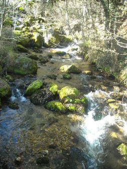 Izvor u Vevčanima: čist zrak i još čišća voda
