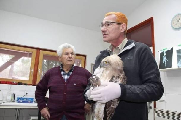 Bruno Škugor i Emilio Menđušić s ozlijeđenim orlom u naručju (Foto: Marko Podrug)