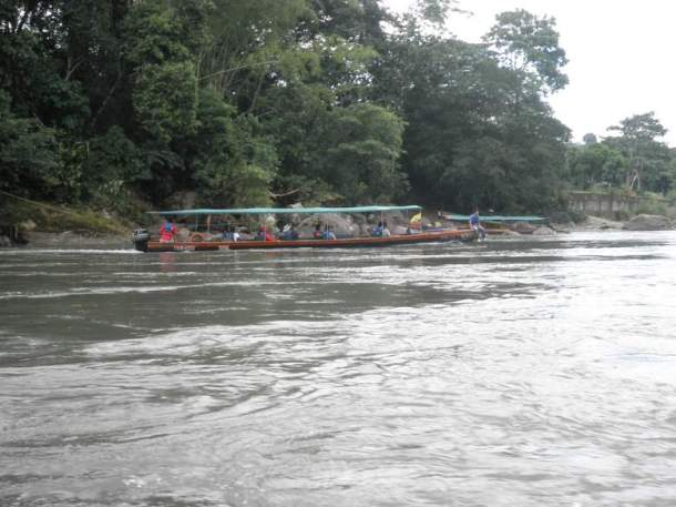 Amazonija, snimia: J.Klisović