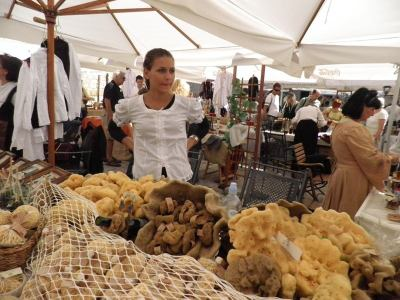 Zlarin- Danas počinje 2. Festival otočkog proizvoda