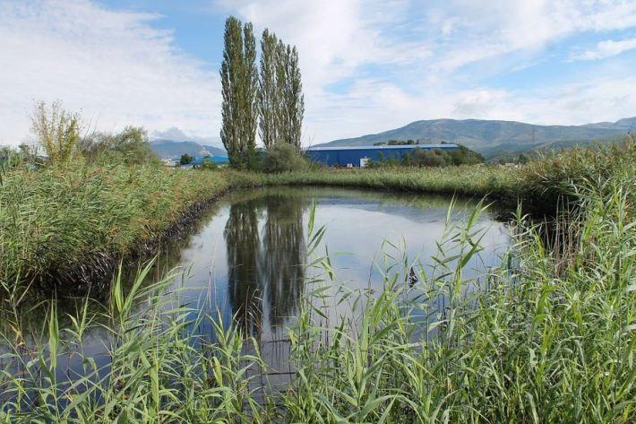 Kiše počistile kninsku lagunu mazuta (Foto H. Pavić) (8)