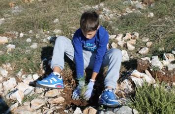 Eko akcija 'Posadi stablo' (Foto H. Pavić) (12)