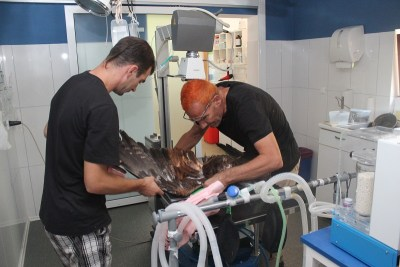 Stipe Klisović i Emilio Menđušić za jedne od operacija (foto Tris/H. Pavić)
