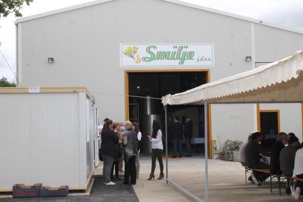 Destilerija dnevno može preraditi 25.000 kilograma smilja, odnosno proizvesti 25 kilograma ulja (Foto: H. Pavić)