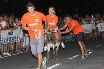 10. međunarodna trka tovarov - 10. međunarodna utrka magaraca (17)