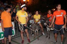 10. međunarodna trka tovarov - 10. međunarodna utrka magaraca (43)
