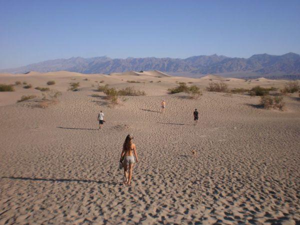 Hrabro prema pustinji