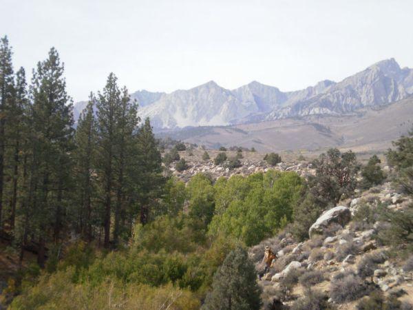 Detalj s planinarenja po Sierra Nevadi