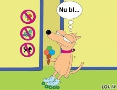Diskriminacija: zabranjen ulaz psima na koturaljkama sa sladoledom
