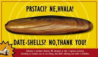 Plakat protiv vađenja prstzaca (izvor www.morsko-prase.hr, Zelena Istra)