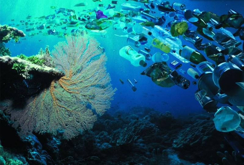 Zagadili smo i najdublje dijelove oceana: Toksični industrijski otpad na dnu Marijanske brazde