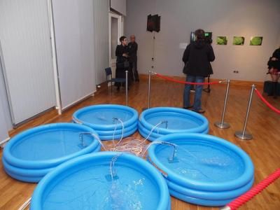 Poziv umjetnicima na Drava Art Biennale 2017: Voda u javnom prostoru grada