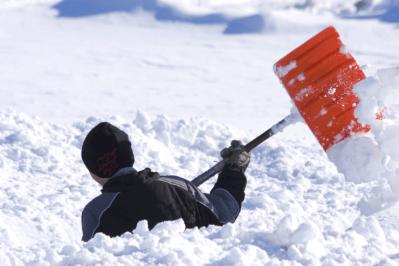 Ekskluzivno: Najdramatičniji današnji naslovi o tzv. polarnoj katastrofi