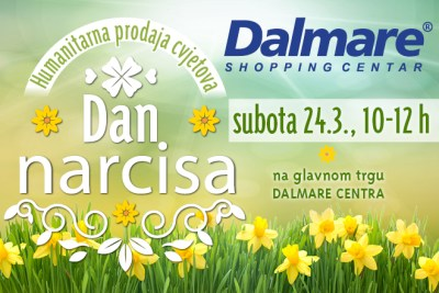 Dan narcisa u Dalmareu