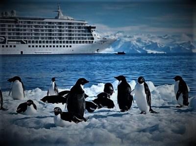 Ilustracija: Pingvini u čudu