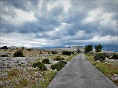 Put za nigdje (foto TRIS/G. Šimac)