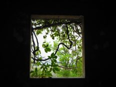 Prozor (foto TRIS/G. Šimac)
