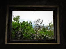 Još jedan prozor (foto TRIS/G. Šimac)