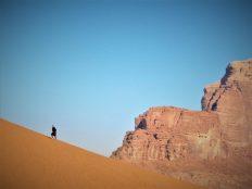 Usamljeni beduin u šetnji (foto TRIS/G. ŠIMAC)