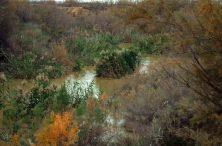 I danas je izgled rijeke Jordan sličan onome iz biblijskog vremena (foto J. Gracin)