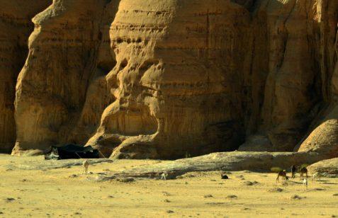 Šator posljednjih pravih nomada u Wadi Rumu (foto Joso Gracin)
