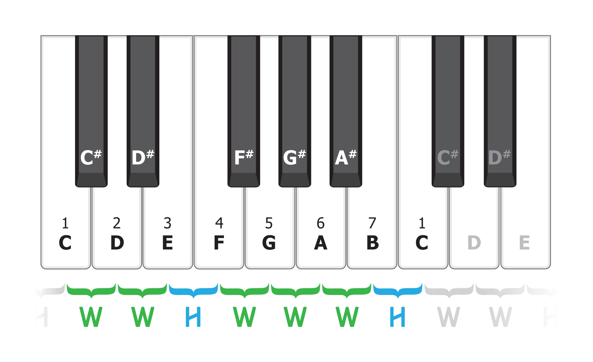 Songs scales chords trisamples now we have the basics of scales we can derive the chords from them play any white key then skip one to the right and then skip another and you have a hexwebz Gallery