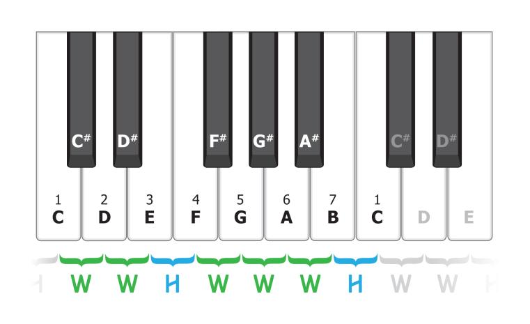 Songs Scales Chords Trisamples