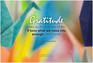 Gratitude unlocks the fullness of life. It turns what we have into enough and more.