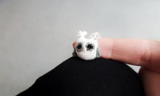 owl-p1