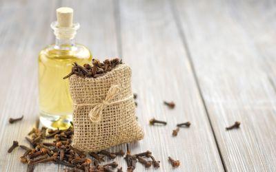 Cloves: An Elderberry Syrup Ingredient Spotlight