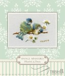 Miniature Bluebirds & Daisies