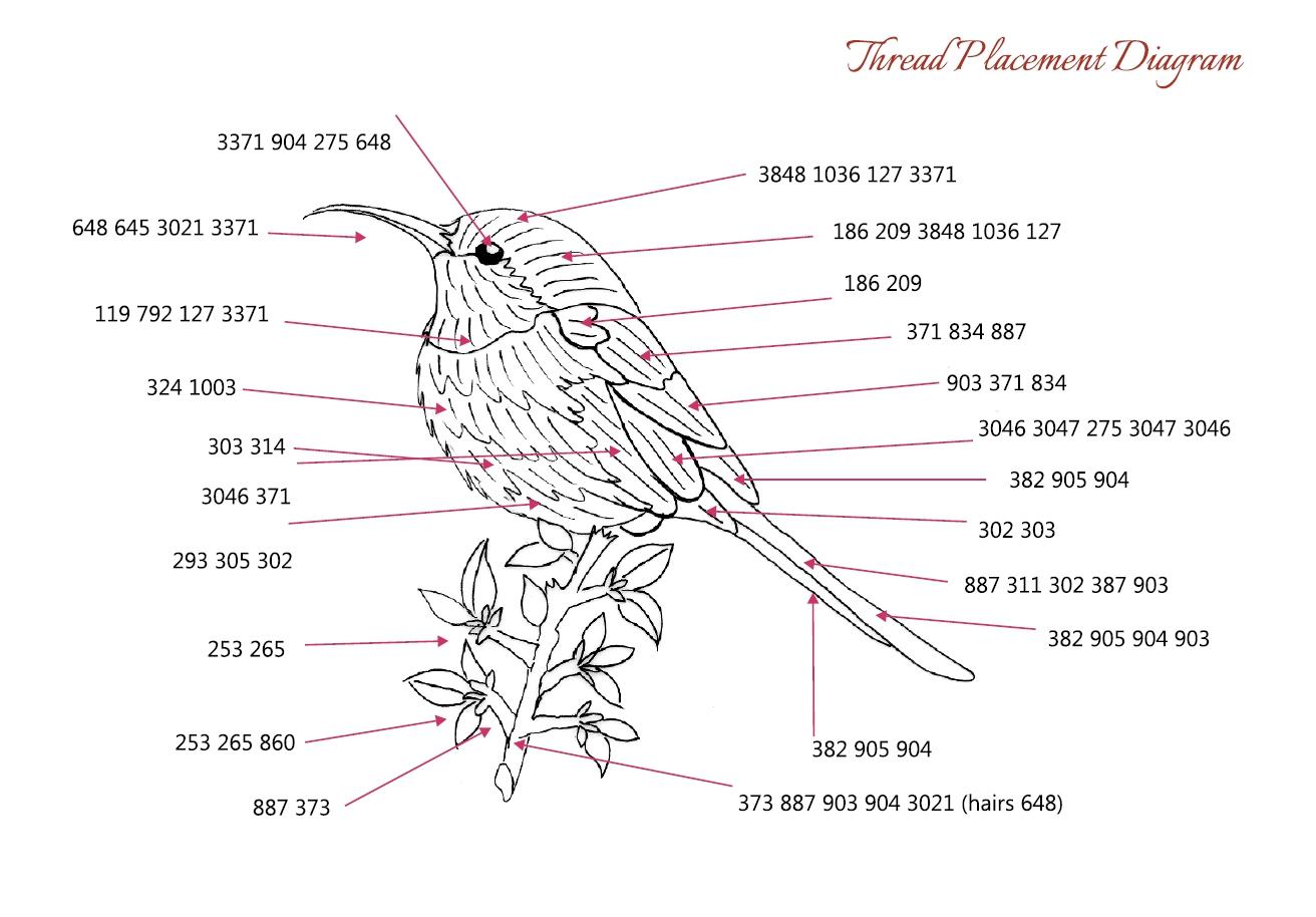 Sunbird Trish Burr Embroidery