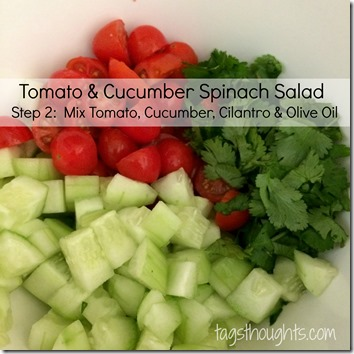 Tomato Cucumber Spinach Salad by trishsutton.com #recipe #tomato #cucumber #spinach