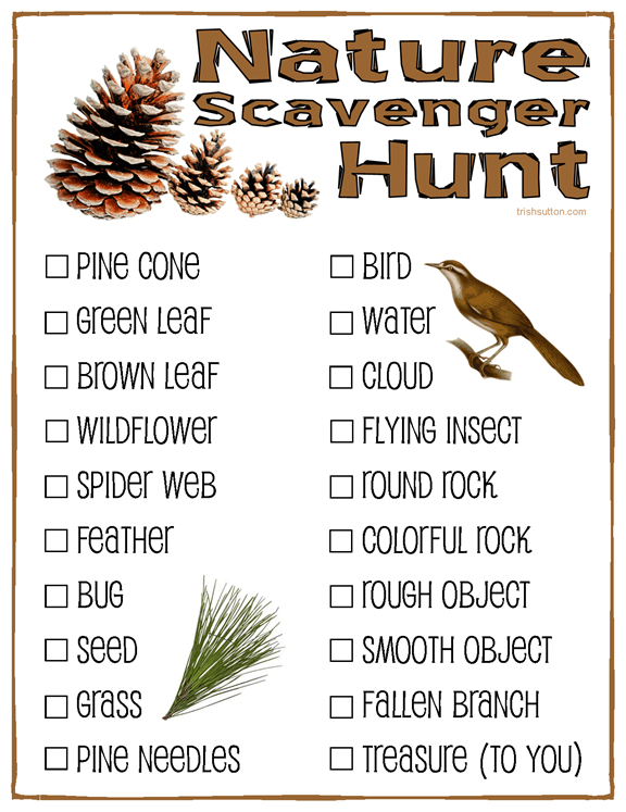 Nature Scavenger Hunt Free Printable