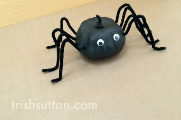 A spider that is too cute to fear and it is made from a mini pumpkin! It's a Long Legged Spider Pumpkin. TrishSutton.com