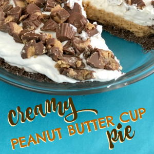 Creamy Peanut Butter Cup Pie Recipe